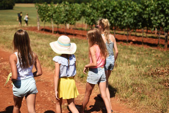 Agrotoerismo in Istrië Kroatië